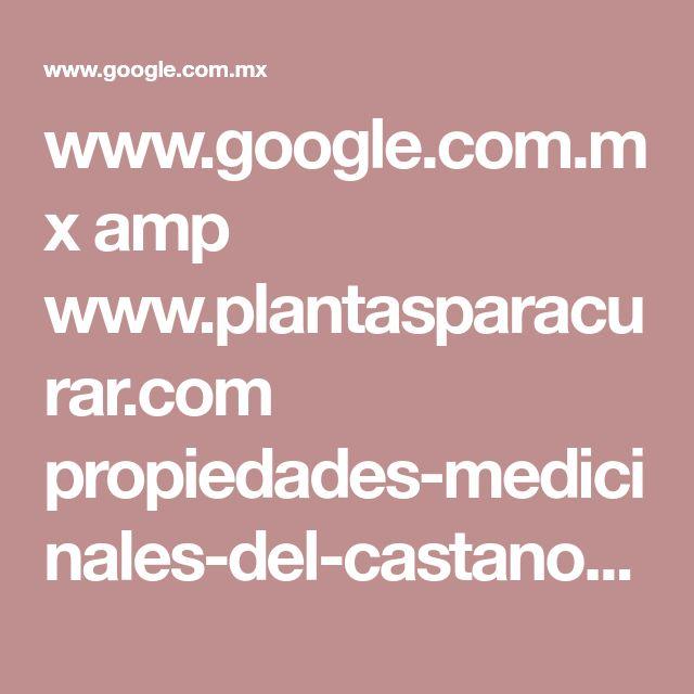www.google.com.mx amp www.plantasparacurar.com propiedades-medicinales-del-castano-de-indias amp