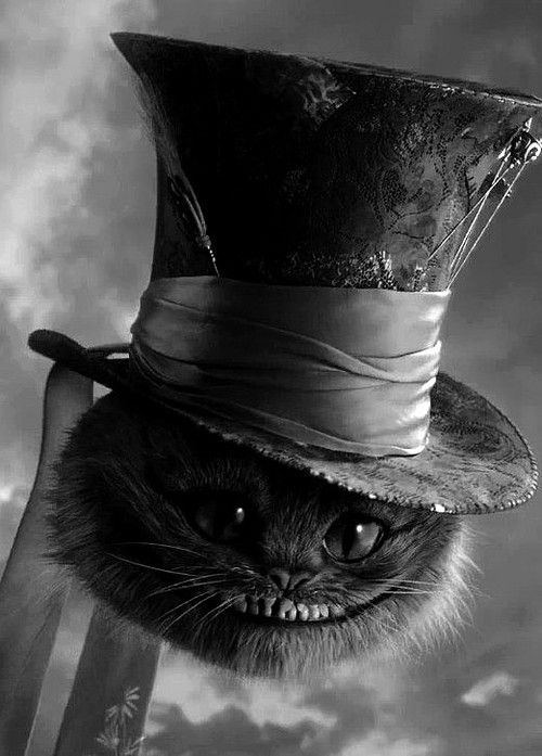 The Cheshire cat in the Mad Hatters tophat .  'Alice In Wonderland' directed by Tim Burton, 2010.  #timburton #cat