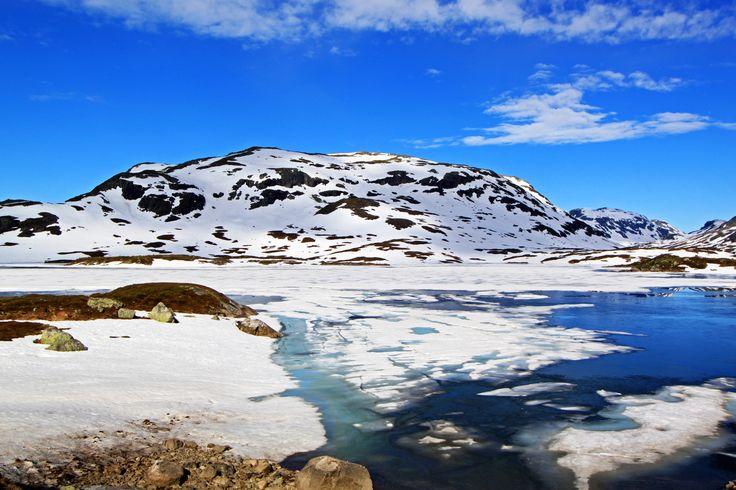 Haukelifjell juni 2014. Norway https://www.flickr.com/photos/46637435@N04/sets/72157645276804996/