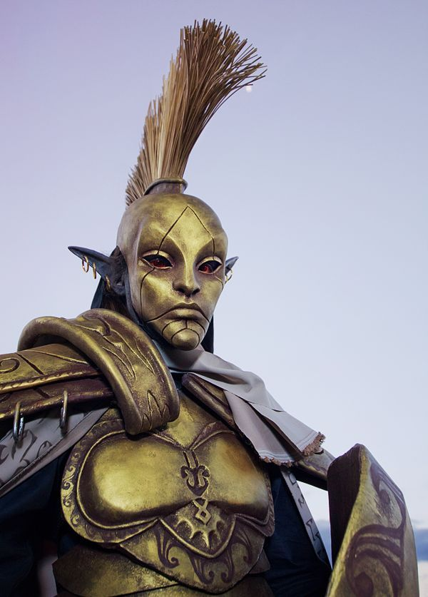 Morrowind,The Elder Scrolls,фэндомы,cosplay,под катом еще,Дом Индорил