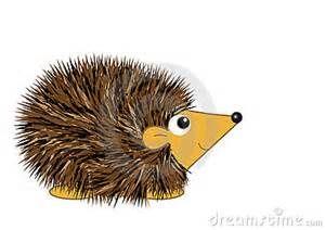 how to draw a hedgehog cartoon