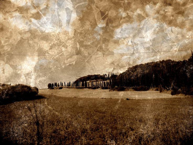 Autumn Sky by Eleonora Gadducci