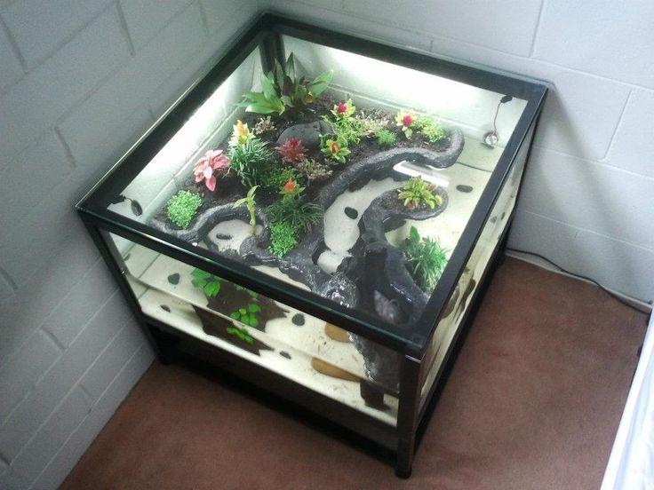 My new coffee table aqua-terrarium project in Community Forum Forum