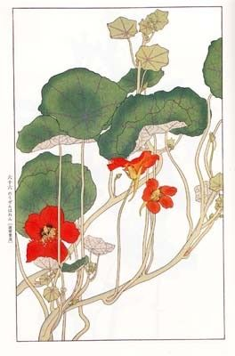 f:id:shinju-oonuki:20101013210129j:image