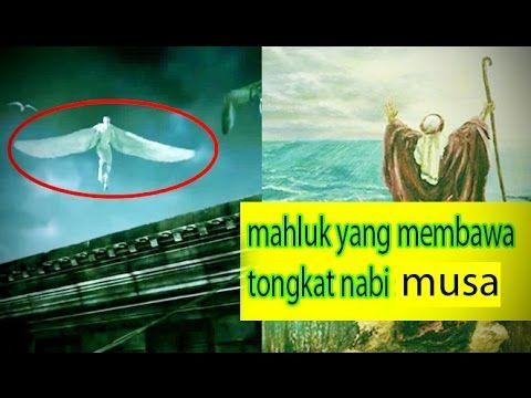 muslim harus tau !!! mahluk mengerikan yang ada dalam ajaran islam