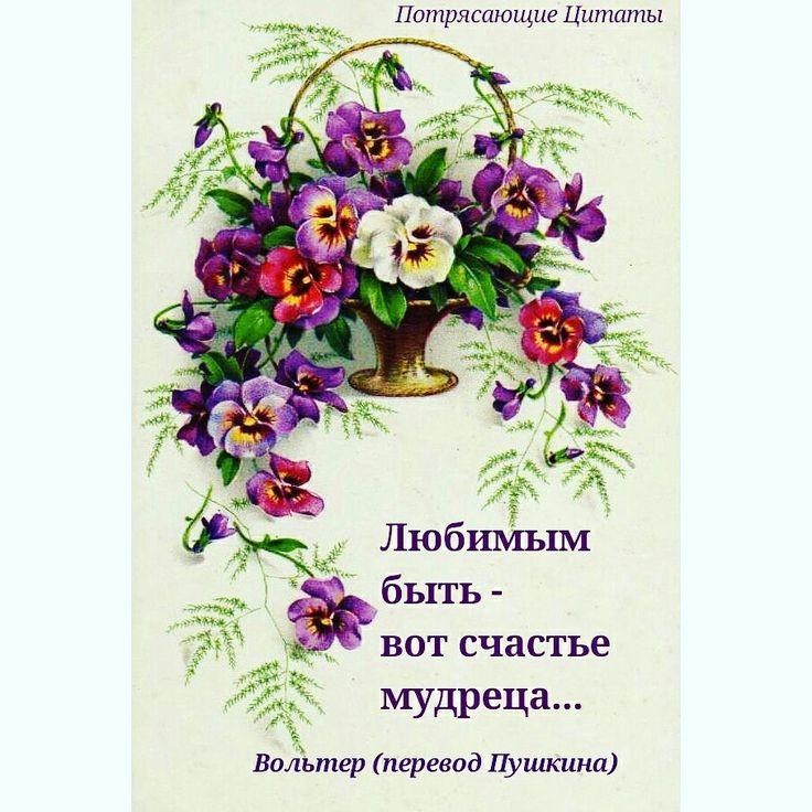 Потрясающие Цитаты #вольтер #пушкин