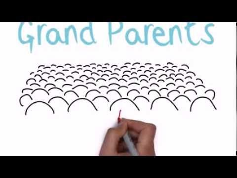 Grandparents Raising Grandchildren:  The Facts