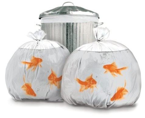 Sokaktaki pis çöp torbalarını birer akvaryuma çevirmeye ne dersiniz?  Çöple uğraşmayı ve çöp atmayı kimsenin sevdiği söylenemez hatta bu iş için para alan çöpçüler dahil. Biz bu durumu değiştirmek için bir adım atıyoruz ve size Akvaryum Balığı Çöp Torbasını sunuyoruz. Amacımız çöp torbanıza baktığınızda sizi gülümsetebilmek. Hem bu sayede sokağınızda renk katabilirsiniz.