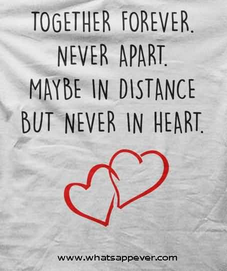 Best Love Quotes Love Quotes | 44 Best Unique Love Quotes And Quotations | Golfian  Best Love Quotes