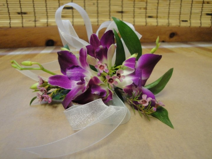 beautiful dendrobian orchid corsage
