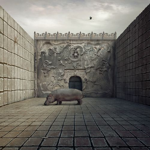 Fotomontaż surrealistyczny.  Autor: Fotoklimat.