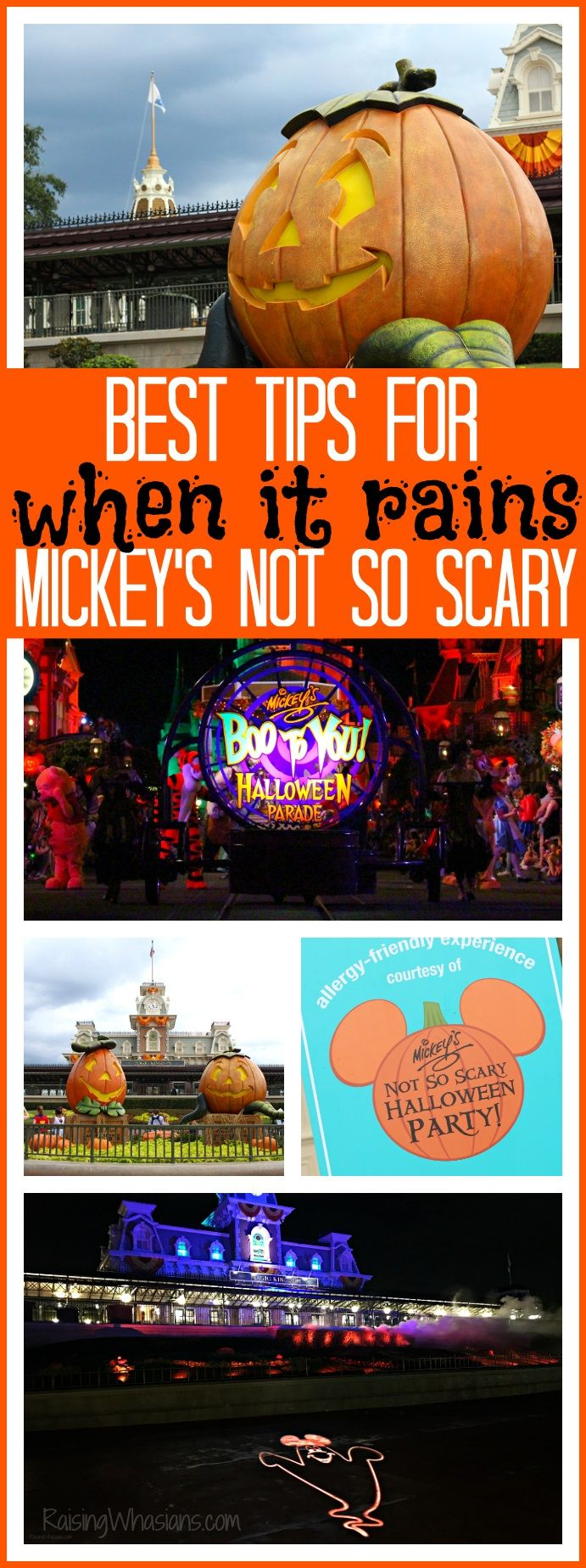 ae8a7efa03 Best Tips When It Rains at Mickey s Not So Scary Halloween Party