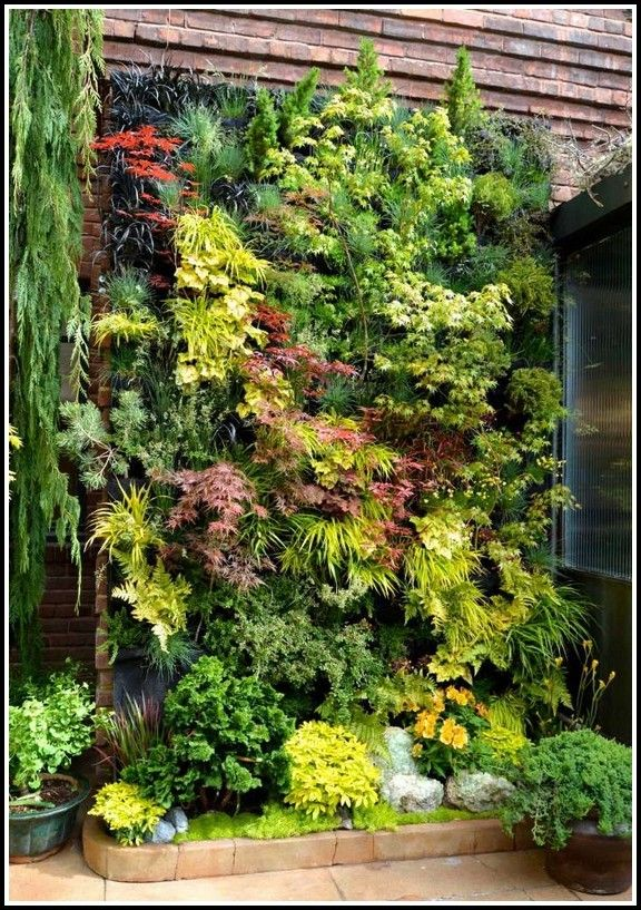 Pin On Indoor Garden Ideas