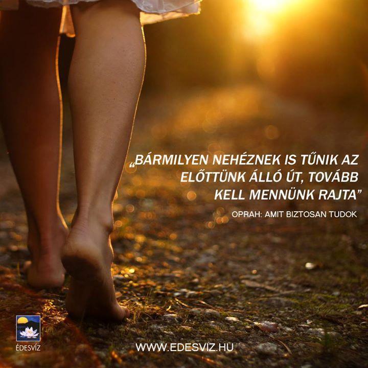 Oprah Winfrey idézete a kitartásról. A kép forrása: Édesvíz Kiadó és Könyvesbolt # Facebook