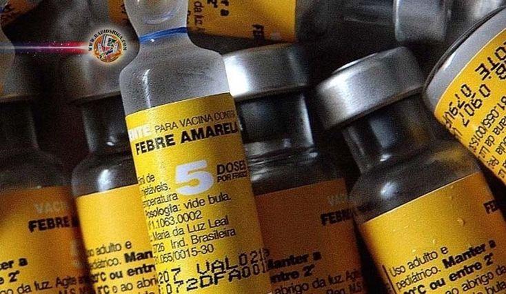 Brasil: Ministério da Saúde orienta população a tomar vacina contra febre amarela. Aproveitando o período com maior número de casos de febre amarela...