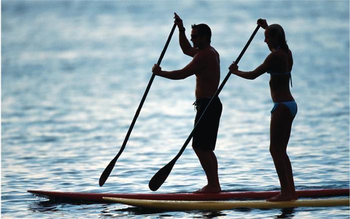 Le stand up paddle, un sport très a la mode, que l'on peut pratiquer sur la mer ou bien sur un lac. Au niveau musculation, on travaille le dos, les bras et les épaules. Mais on sollicite aussi les muscles profonds : la ceinture abdominale, les fessiers, les ischio jambiers. Sport très complet et facile à pratiquer.                                                                                                                                                      Plus