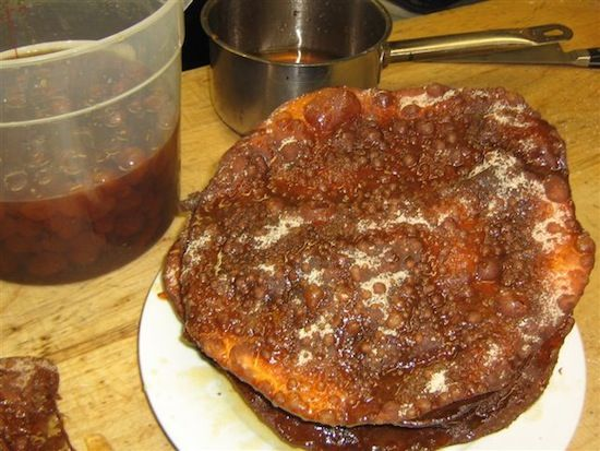 102 best costa rican dessert recipes images on pinterest costa she uses the syrup from the candied kumquats recipe to glaze her costa rican style prestios forumfinder Choice Image