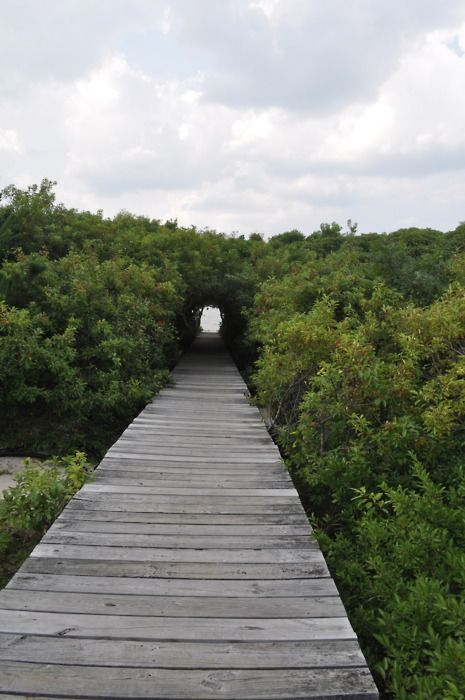Path to heaven.