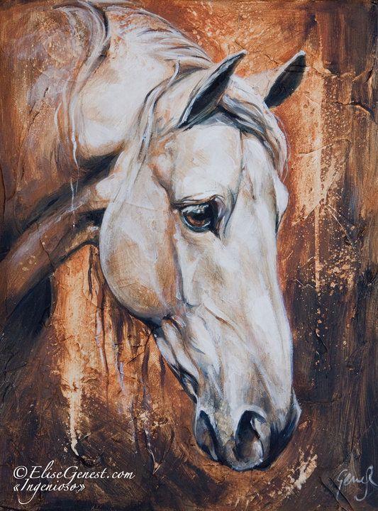 www.thewarmbloodhorse.com  horse