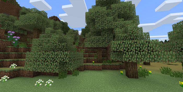 Seasons Add-on expresses the changes of seasons in a realistic way. There is seasonal change after 20 minutes with the signal of a gradual shift in the leaves' colors. You will find most of the leaves have this change, except for jungle and birch leaves. The time for the color to shift is quite... https://mcpebox.com/seasons-add-1-2-beta-texture-pack-minecraft-pe/