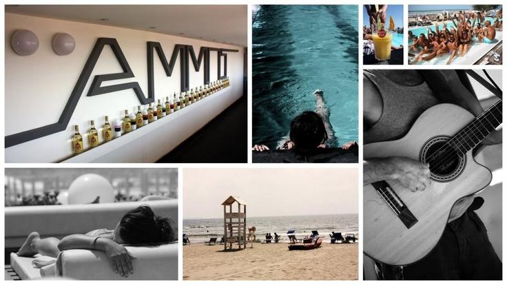 Ammot day