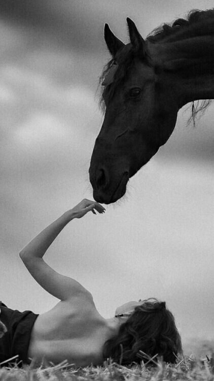 Lady and horse with loving touch.