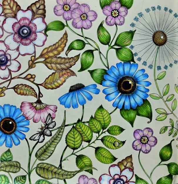 ideias para pintar livro jardim secreto : ideias para pintar livro jardim secreto: técnicas para pintar os famosos livros de colorir como Jardim Secreto