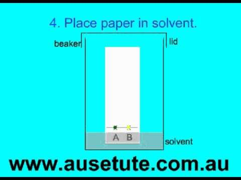 basics of paper chromatography ap chem 1 foundations