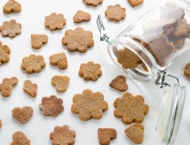 Katzenkekse+mit+Thunfisch – Snacks für Hund und Katze