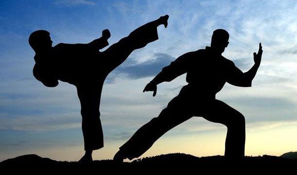 Bildergebnis für боевые искусства