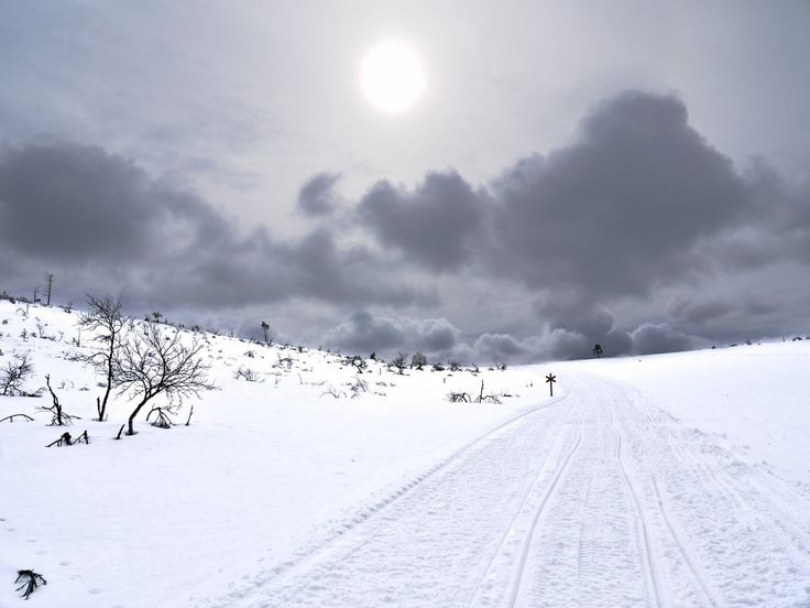 Laponsko 2 <br>Päťdesiat odtieňov sivej a bielej