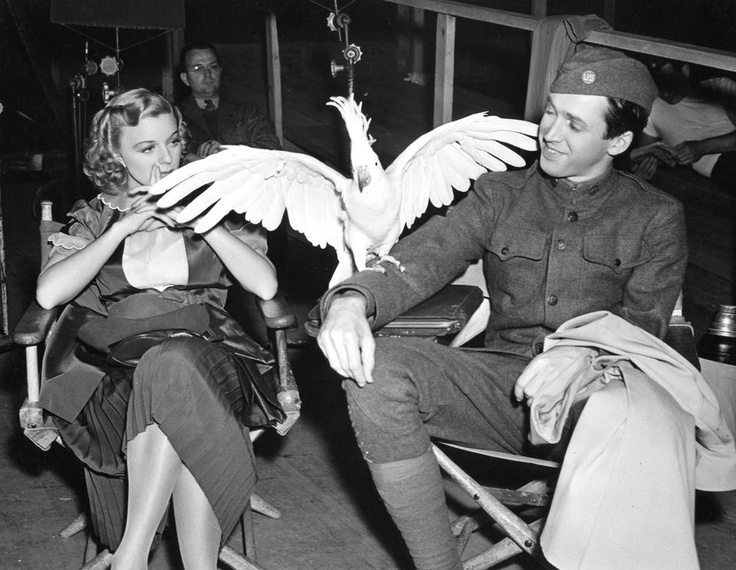 """Jimmy Stewart and Margaret Sullavan on the set of """"The Shopworn Angel"""" (1938) with a large bird!"""