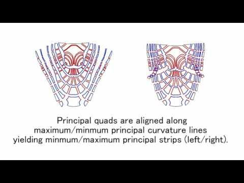 Fabrication of freeform objects by principal strips(SIGGRAPH ASIA 2016) - YouTube