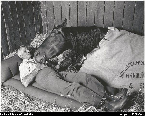 """Racehorse trainer Tommy Woodcock with his champion racehorse Reckless on the night before the 1977 Melbourne Cup. """"Horse and trainer died within months of each other in 1985. Tommy Woodcock holds a special place in Australian racing. He was strapper to the mighty Phar Lap in 1930 when the great horse won the Melbourne Cup, and Phar Lap died in his arms while overseas in 1932."""""""
