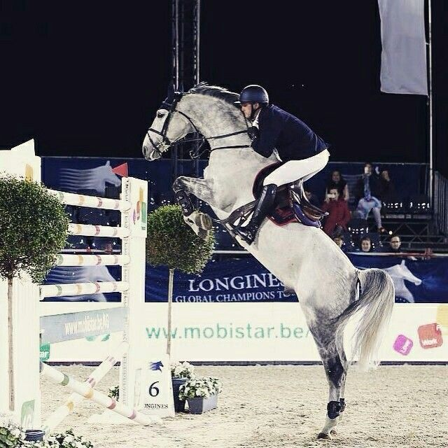 Amazing photo! Oliver Phillippaerts winning the 6 bars at Jumping Antwerpen. Photo by Stefano Grasso.