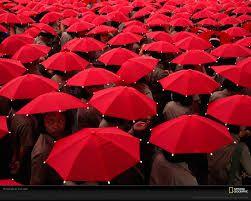 Resultado de imagen para fotos rojas de national geographic