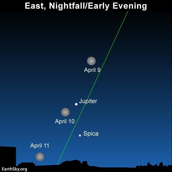 All 5 bright planets appear in the April night sky: Mercury and Mars at dusk, Jupiter all night long, Saturn from midnight until dawn and Venus before sunrise. Watch for Jupiter around opposition on April 7!