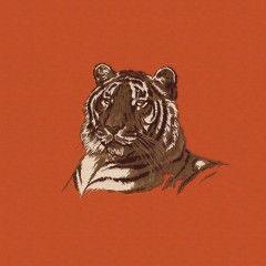 Hermes Home_Croquis de Tigre
