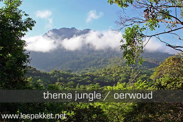 Inleiding Ga je mee naar de jungle? Met zijn wilde dieren spreekt de jungle (of het oerwoud, of het regenwoud) altijd tot de verbeelding. Er is veel te ontdekken, neem[...]