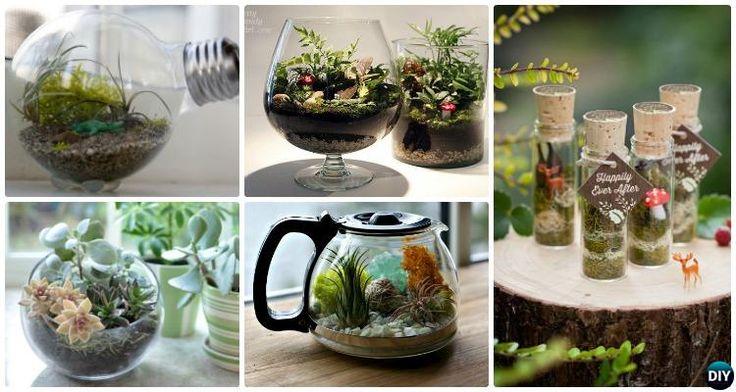 ideas about Indoor Fairy Gardens on Pinterest
