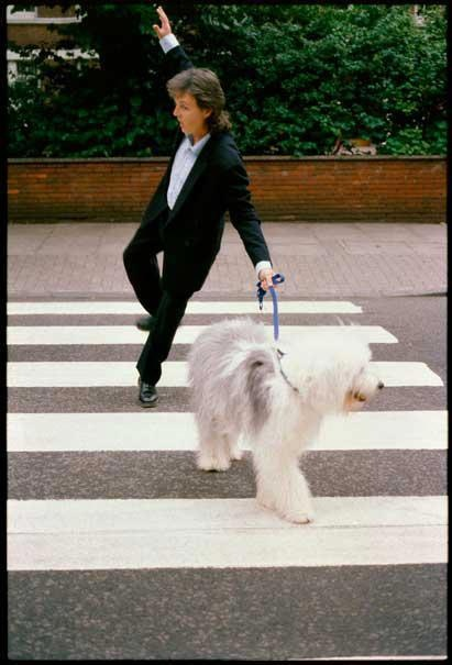 Paul McCartney (on abbey road again)