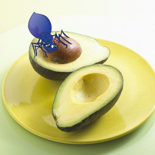 Anna found an Avocado! #kids #books #avocado