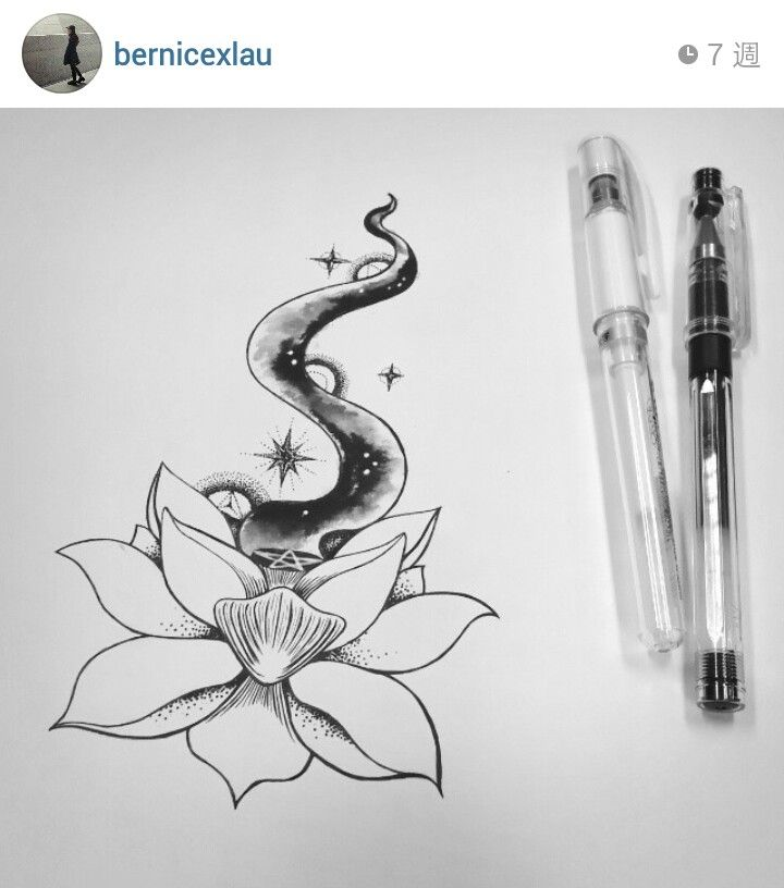 Lotus drawing~