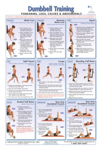 Exercise Anatomy Chart