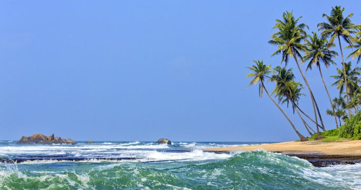 Getting around Sri Lanka by train - Lonely Planet