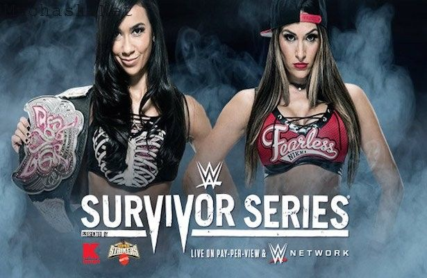 Divas Championship Match WWE Survivor Series 2014