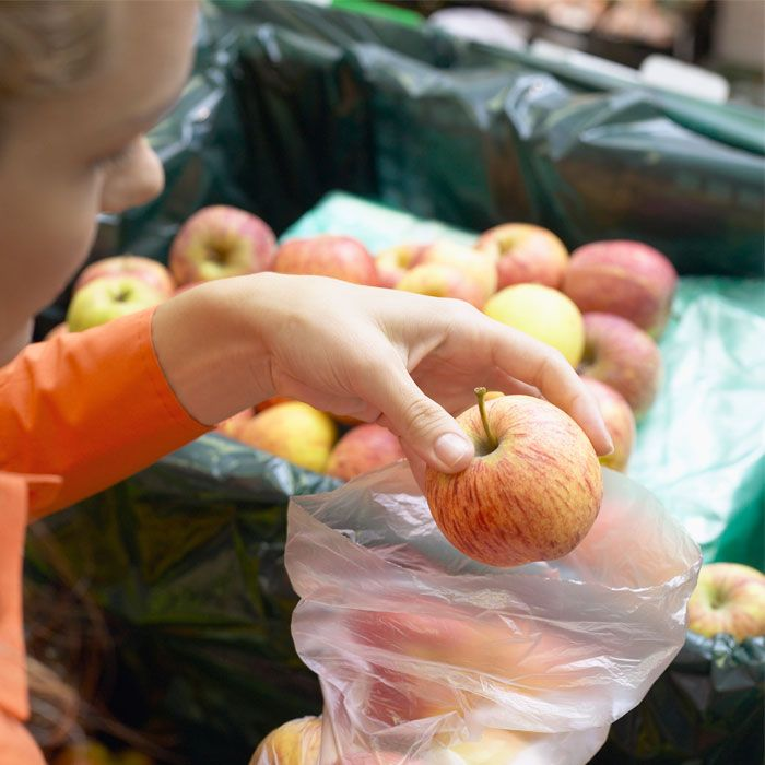 Europe Bans American Apples
