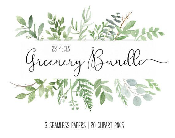 Watercolor Foliage Eucalyptus Greenery Clip Art Botanical Bundle
