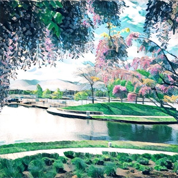 Kelowna landscape. This #painting was made from a simple photo with a #Prisma app. #Illustration #Spring #Art #Kelowna #Okanagan #Landscape #drawing