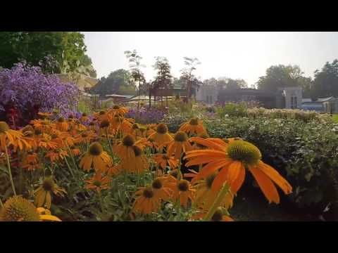 Buone Feste da Orticolario. Video by OLO creative farm. Riprese aeree by Emotiinal View. Bee synth by Moth Club